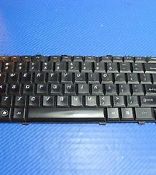 Laprise For Tamilnadu Govt Lenovo B460e Internal Laptop Keyboard (Black)